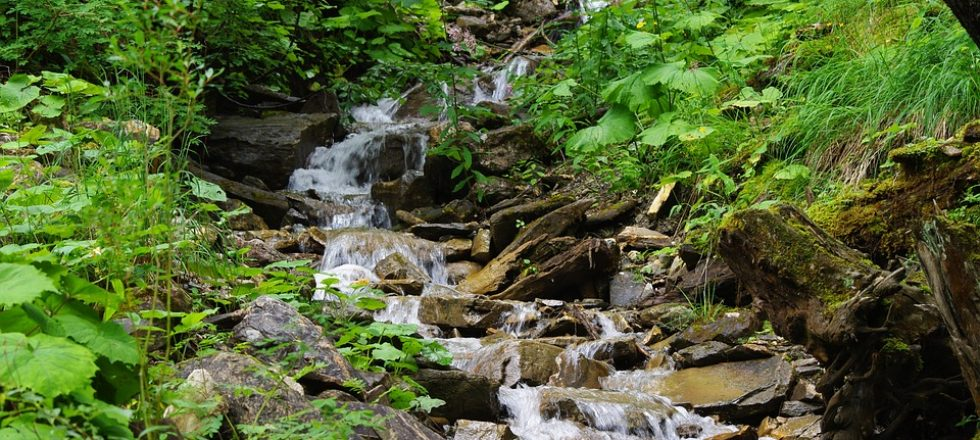 acqua-torrente